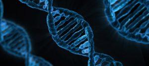 Should voluntary employee wellness programs include genetic testing?