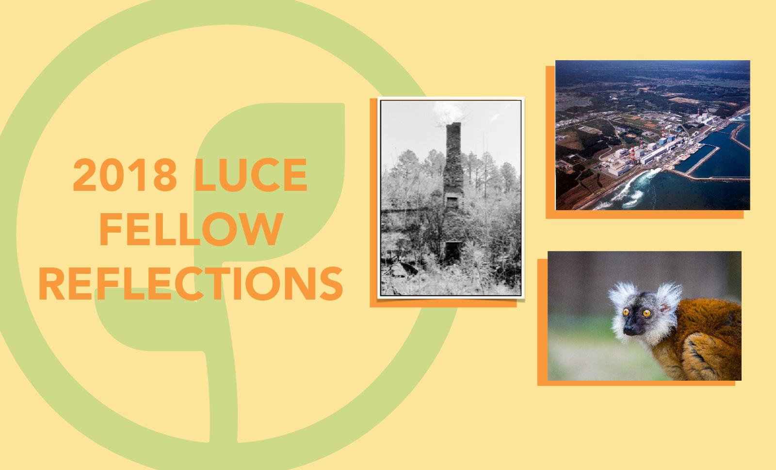 luceFellowReflections2018Slider-01
