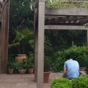 Art in Gardens 3